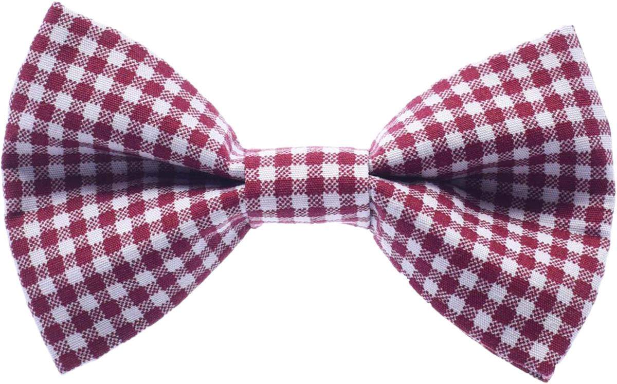 Галстук-бабочка для мальчика Malina By Андерсен, цвет: бордовый. 00022бм00. Размер универсальный галстук бабочка для мальчика malina by андерсен цвет черный 00021бм00 размер универсальный