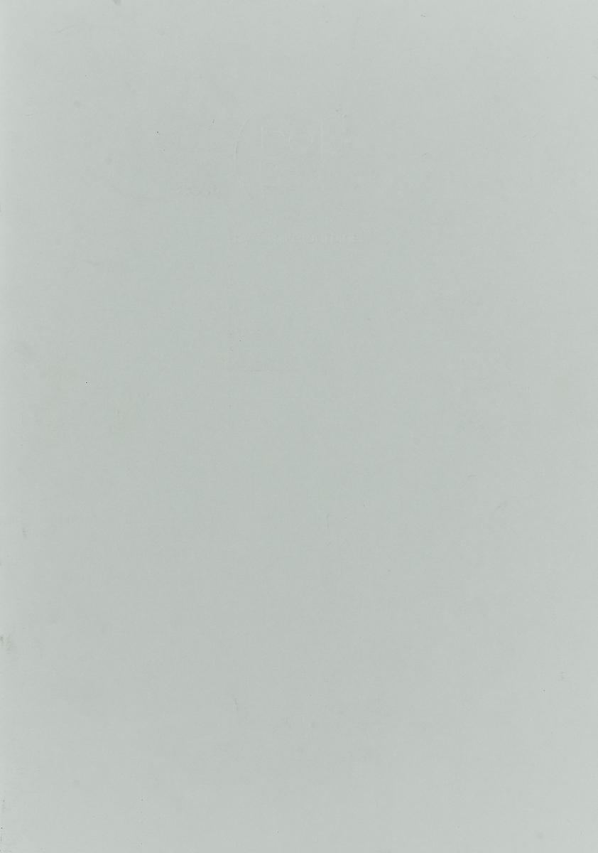 "Блокнот Clairefontaine ""Crok' Book"", формат A3, 24 листа цвет: светло-серый"