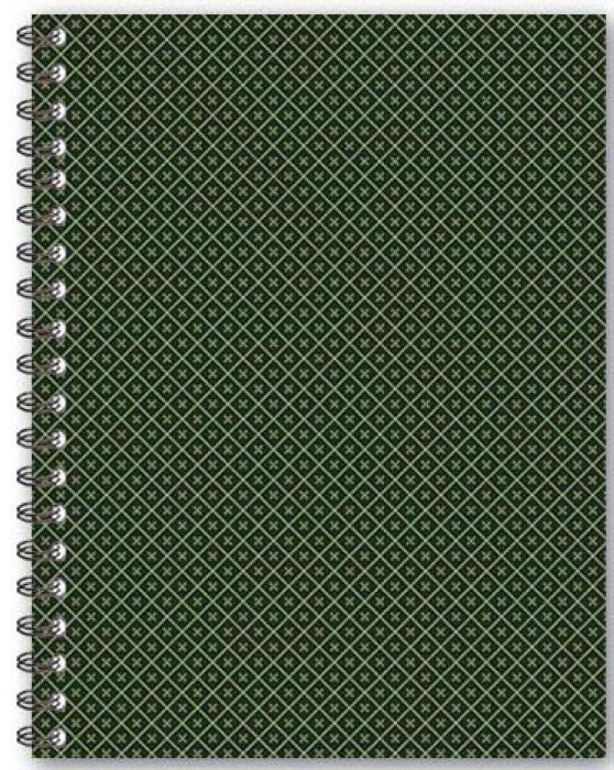 Феникс+ Тетрадь 100 листов в клетку цвет зеленый
