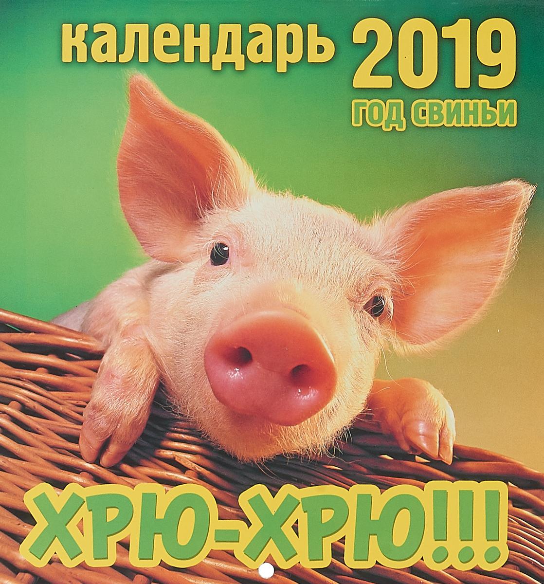 Календарь перекидной на 2019 год. Хрю-хрю! календарь перекидной на 2019 год кошачье семейство