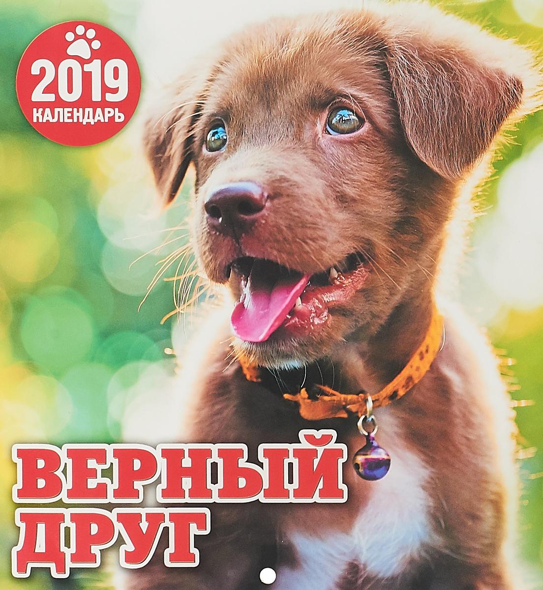 Календарь перекидной на 2019 год. Верный друг календарь перекидной на 2019 год кошачье семейство