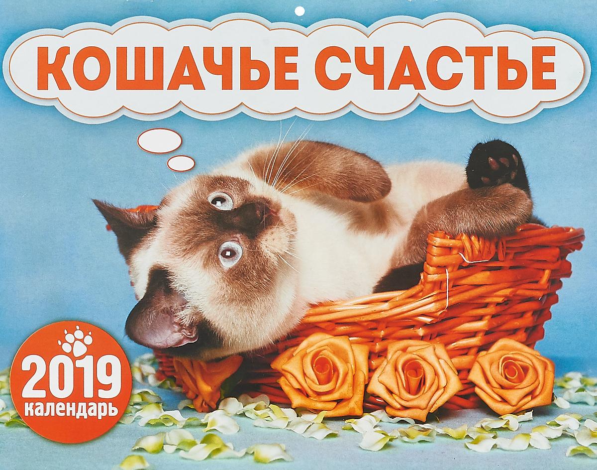 Календарь перекидной на 2019 год. Кошачье счастье календарь перекидной на 2019 год кошачье счастье