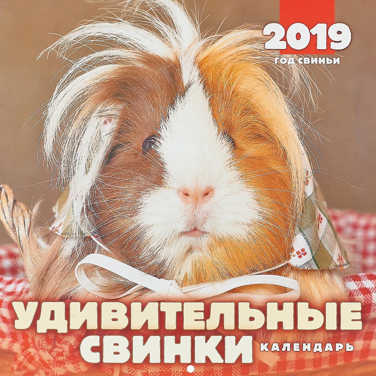 Календарь перекидной на 2019 год. Удивительные свинки цены