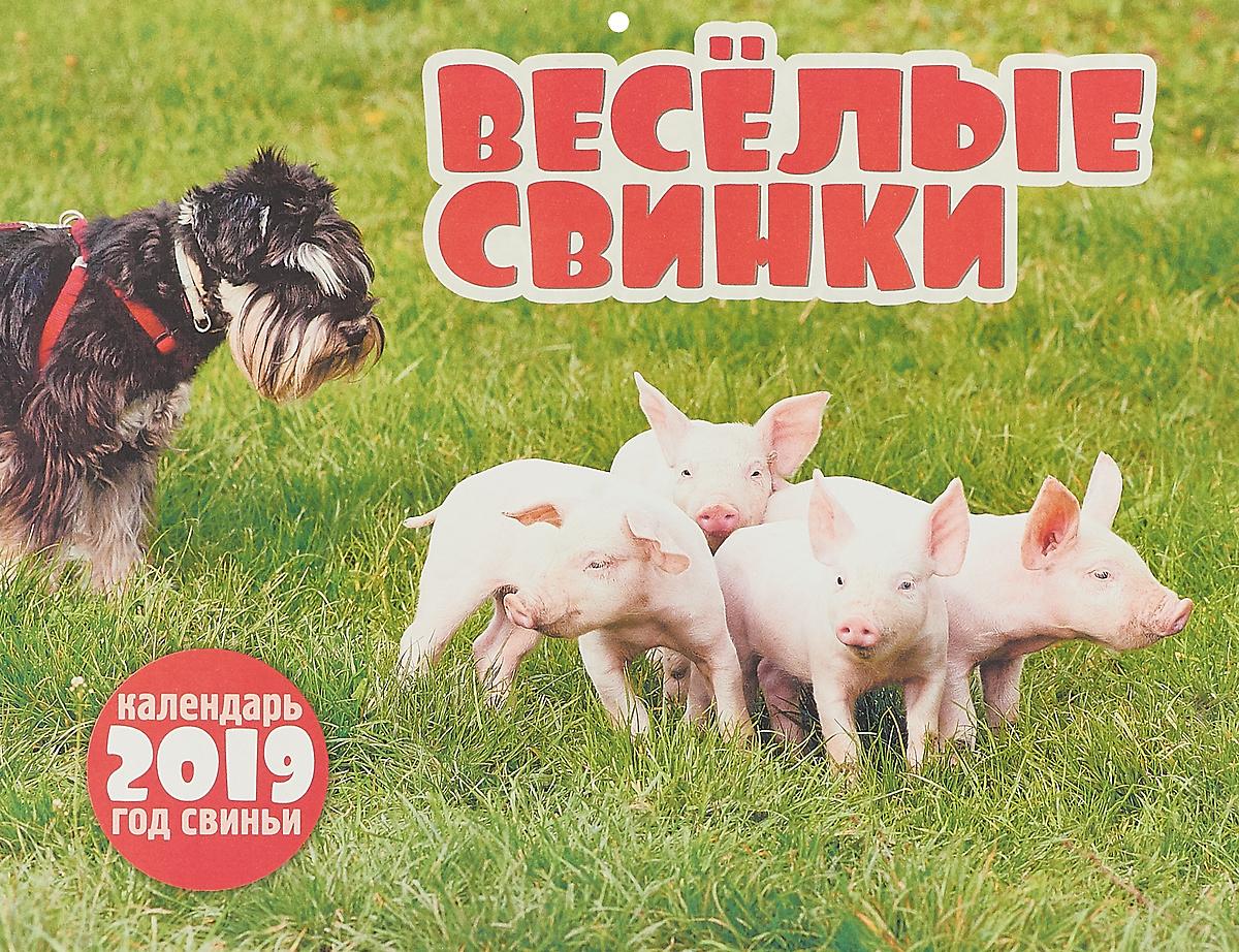 Календарь перекидной на 2019 год. Весёлые свинки календарь перекидной на 2019 год кошачье счастье