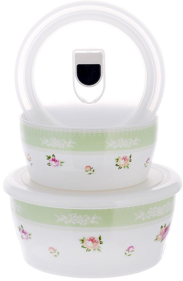 """Набор емкостей для приготовления и хранения продуктов """"Зеленый горизонт"""" с крышками, цвет: белый, зеленый, 2 шт. 574-519"""