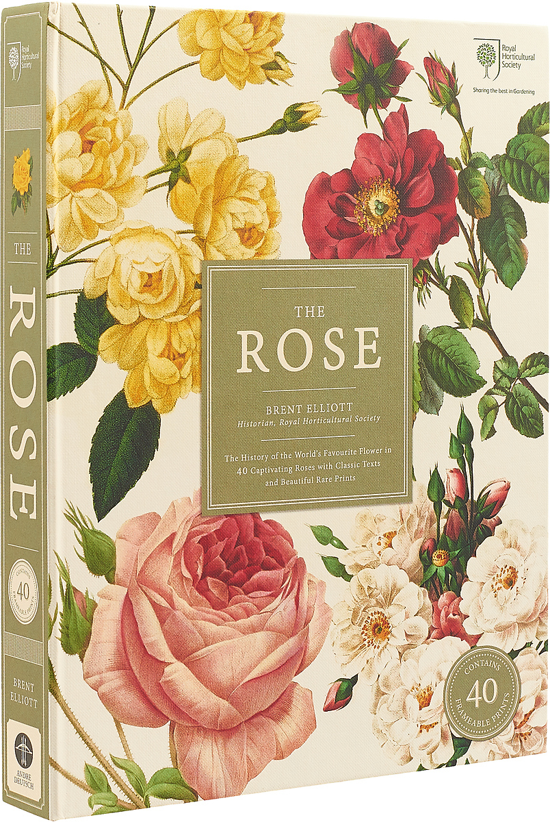 The Rose the rose the history of the world's favourite flower in 40 captivating roses with classic texts and rare beautiful prints