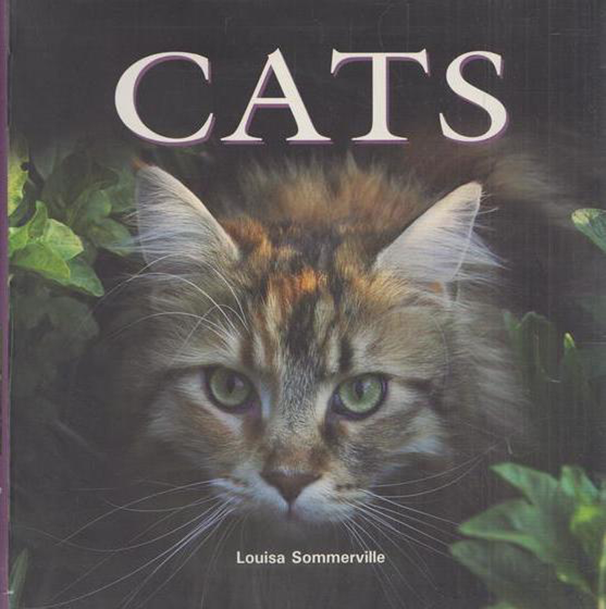 Sommerville l. Cats/Кошки malcolm kemp extreme events robust portfolio construction in the presence of fat tails isbn 9780470976791