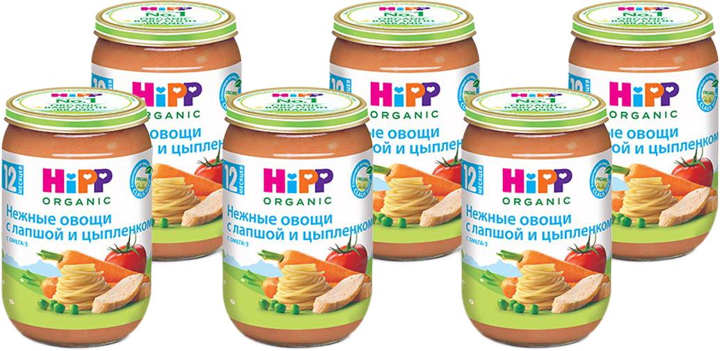 Hipp пюре овощная смесь с лапшой и цыпленком, 1 года, 6 шт по 220 г