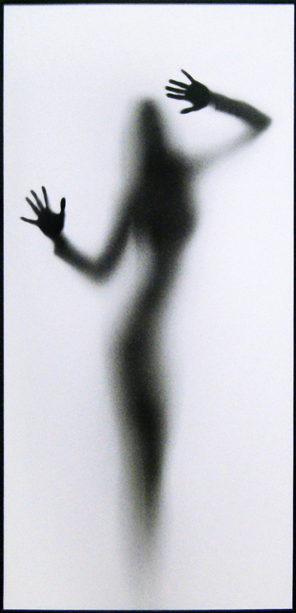 """Картина Dekart """"Тени 2"""", 35 х 70 х 2 см"""