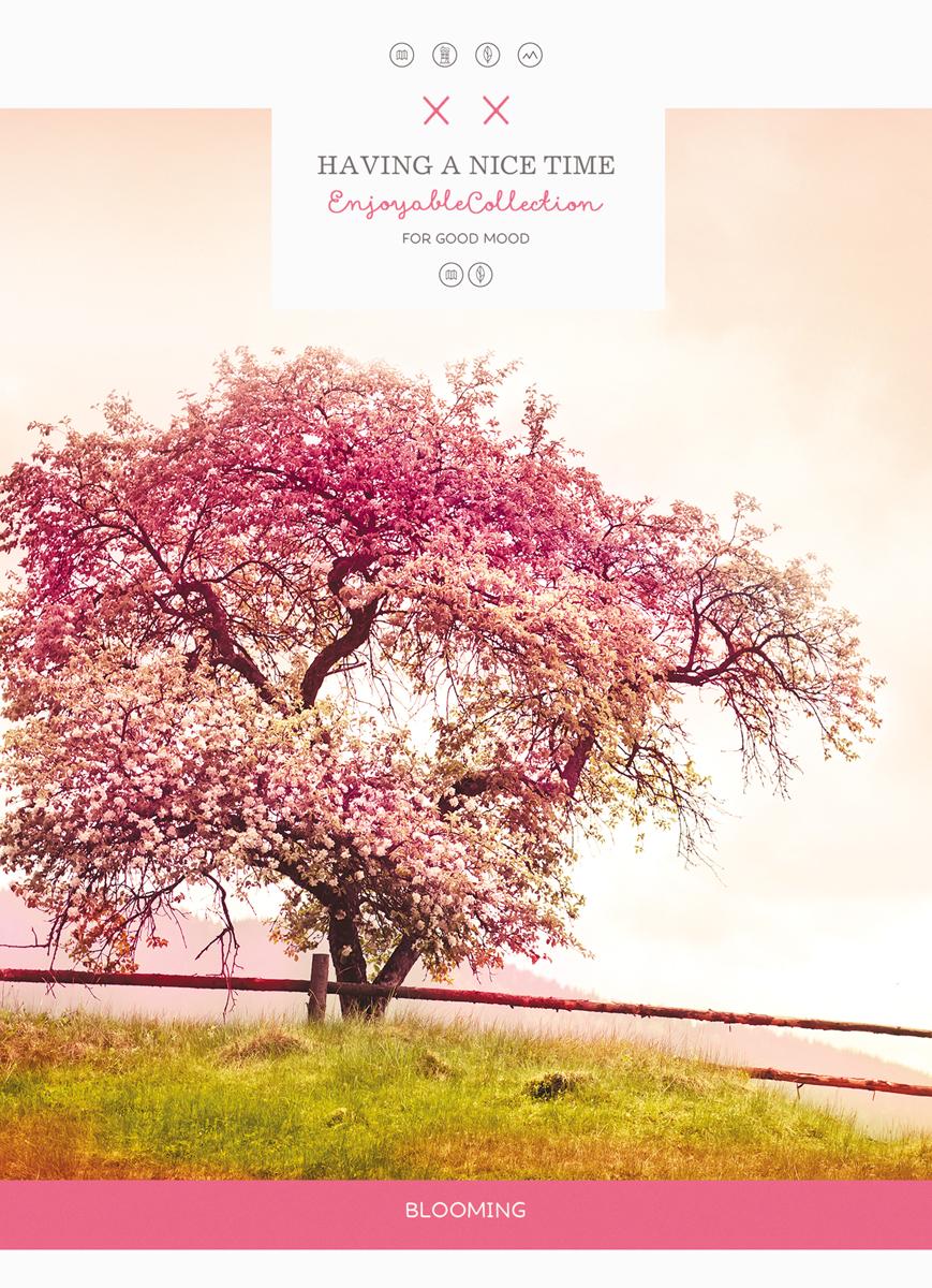 Тетрадь Magic Lines Дерево, цвет: разноцветный, 80 листов в клетку тетрадь magic lines яркие полоски цвет разноцветный 96 листов в клетку