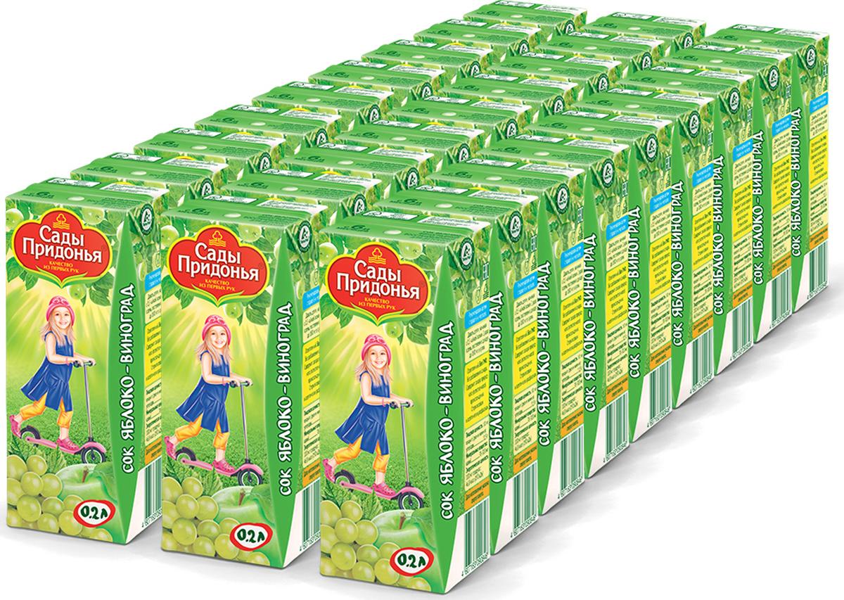 Сады Придонья Сок яблочно-виноградный осветленный восстановленный с 6 месяцев, 27 шт по 0,2 л сок яблочно виноградный осветленный восстановленный с 6 месяцев сады придонья 18 шт по 0 125 л