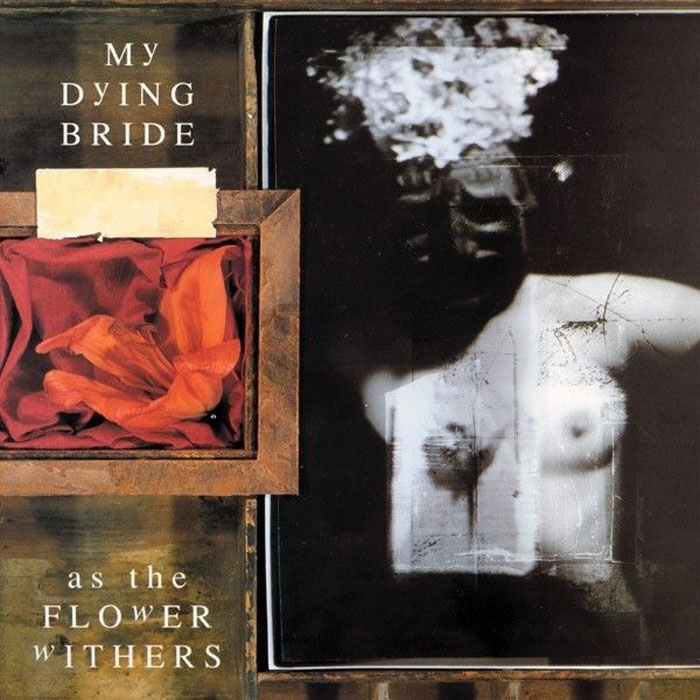 My Dying Bride MY DYING BRIDE As The Flower Withers(LP) the german bride