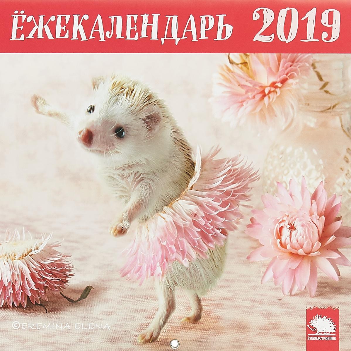 Ёжекалендарь 2019