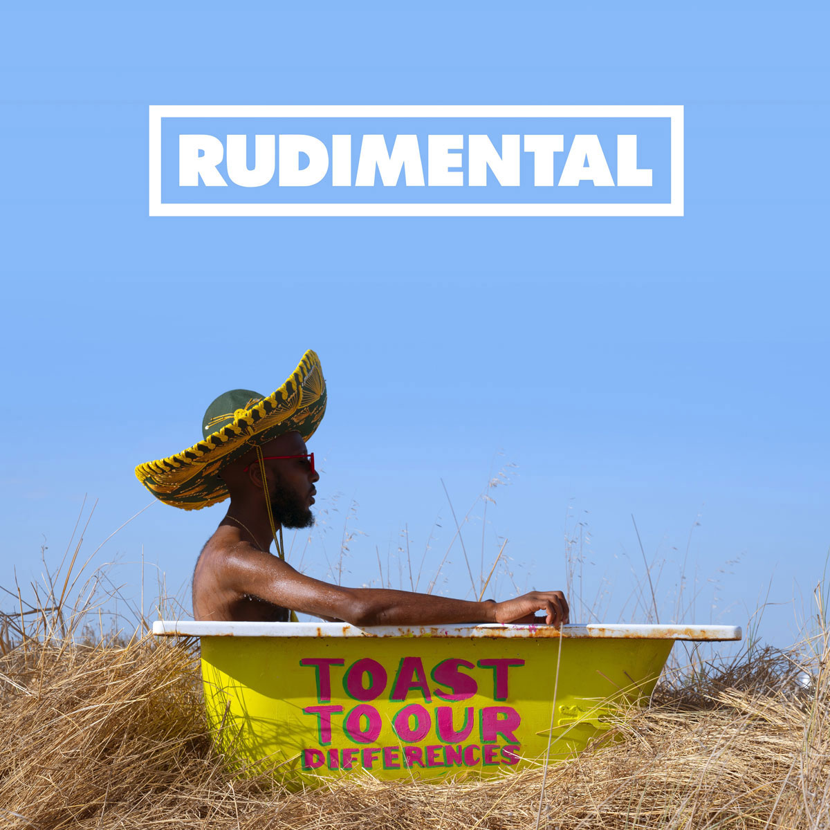 Rudimental Rudimental. Toast To Our Differences (2 LP)