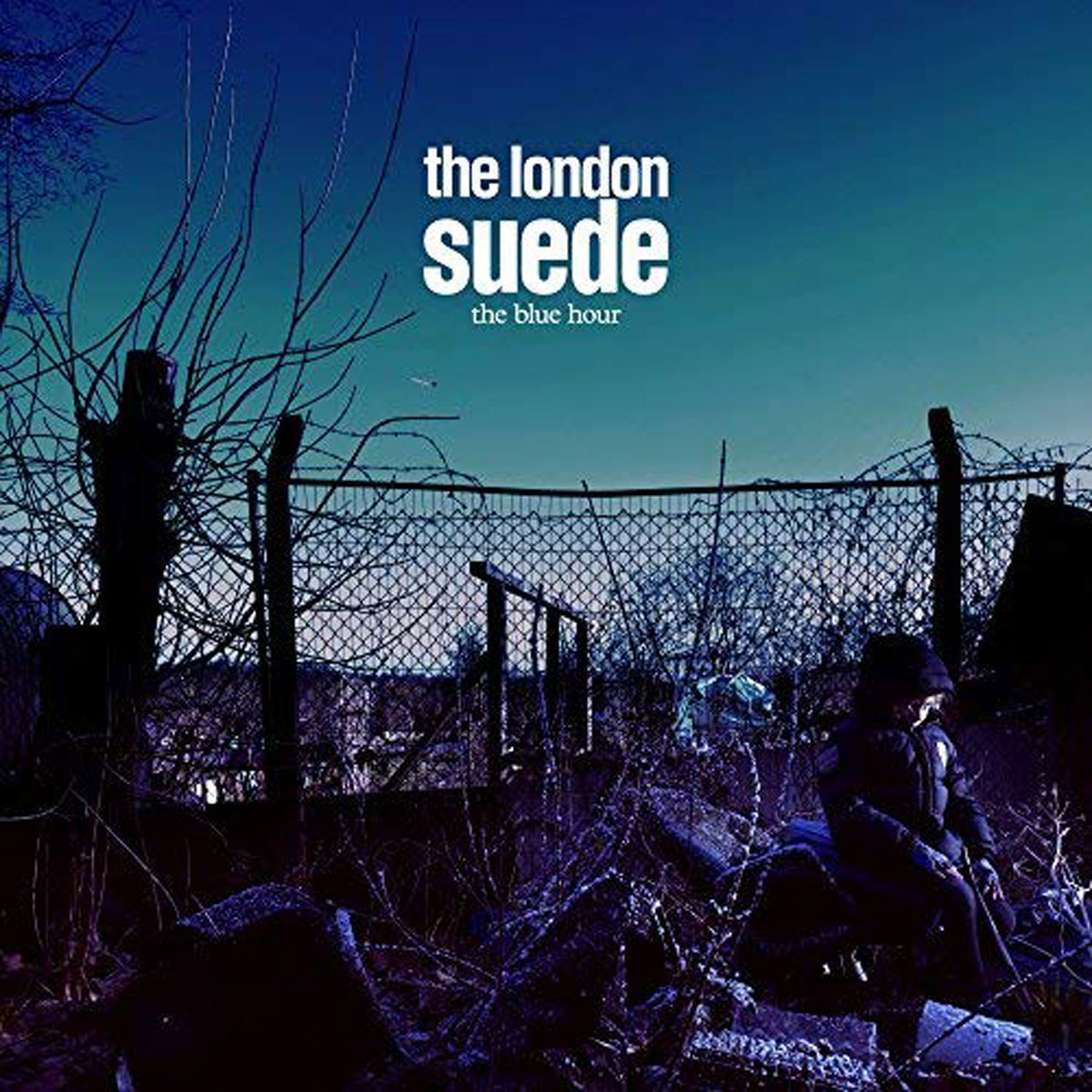 Фото - Suede Suede. The Blue Hour (2 LP + 2 CD + DVD) platform suede wedge mules