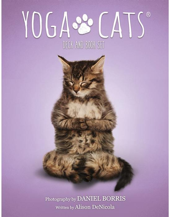 Карты Таро U.S. Games Systems Yoga Cats Challenges cards волшебные позы здоровья