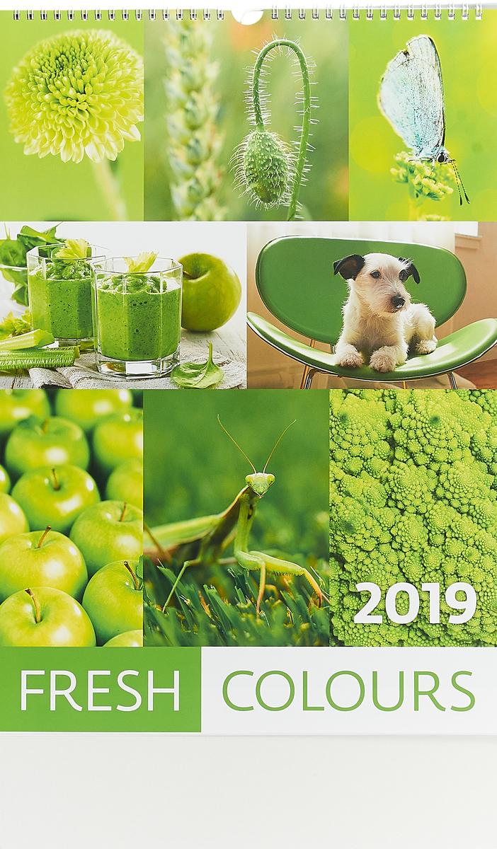 Календарь 2019. Fresh Colours / Разноцветный мир