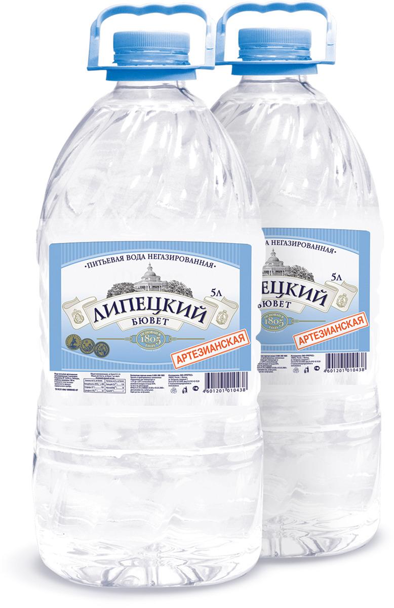 Липецкий бювет Вода питьевая артезианская негазированная, 2 шт по 5 л