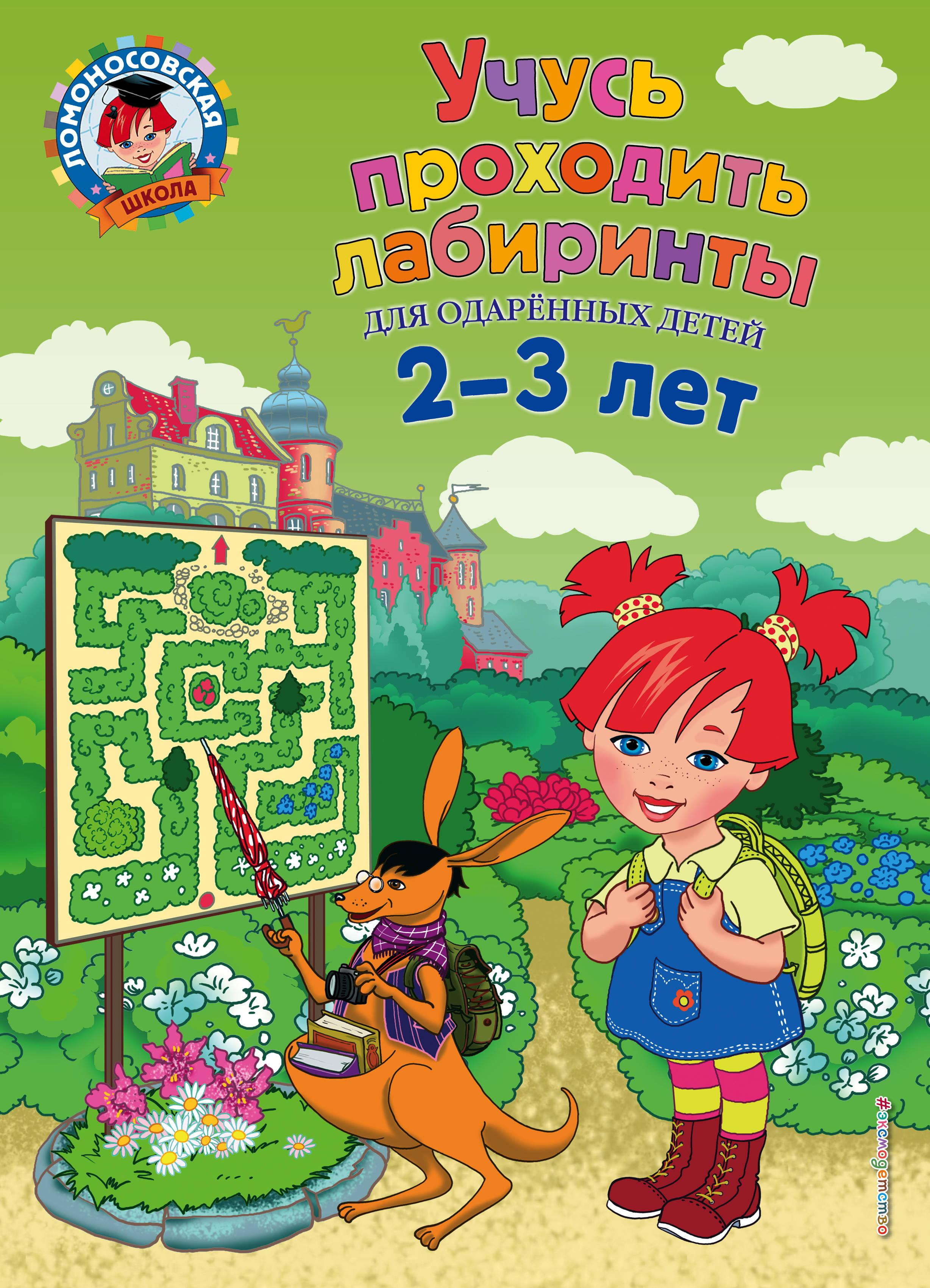 Ю. А. Сафина, Е. А. Родионова Учусь проходить лабиринты. Для детей 2-3 лет