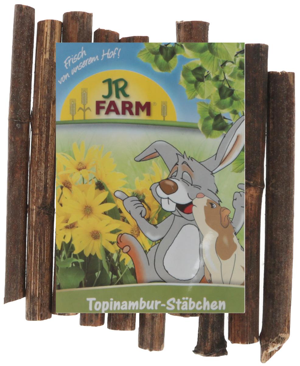 Лакомство для грызунов JR Farm Побеги топинамбура (артишока иерусалимского), 30 г цена