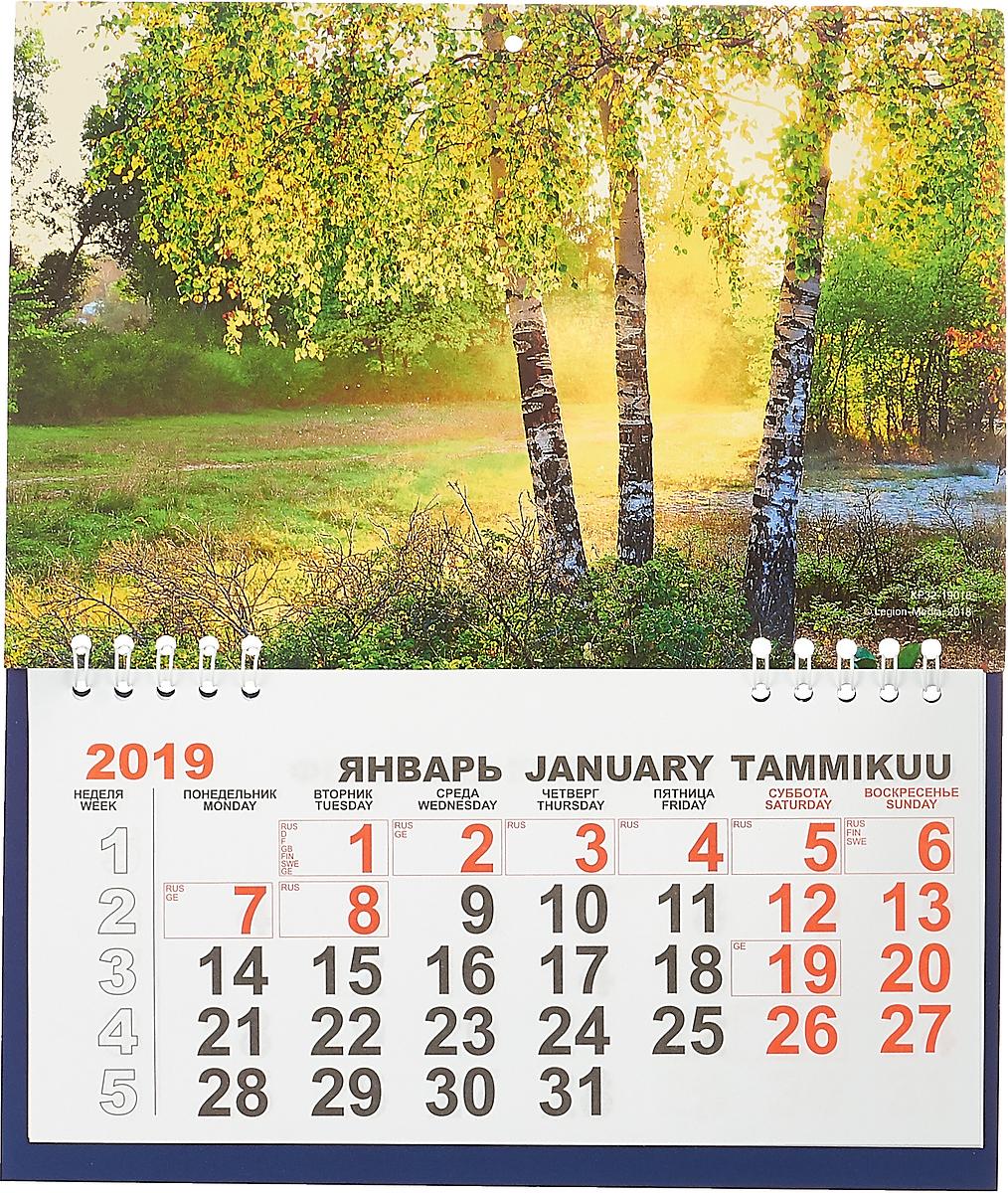 Фото - Календарь отрывной на 2019 год. Русские березы русские святые календарь на 2019 год
