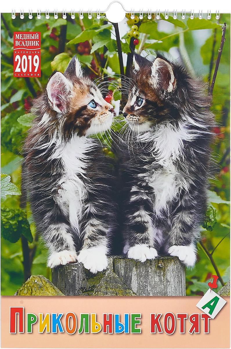 Календарь на спирали на 2019 год. Прикольные котята календарь 2019 на спирали пейзаж в мировом искусстве