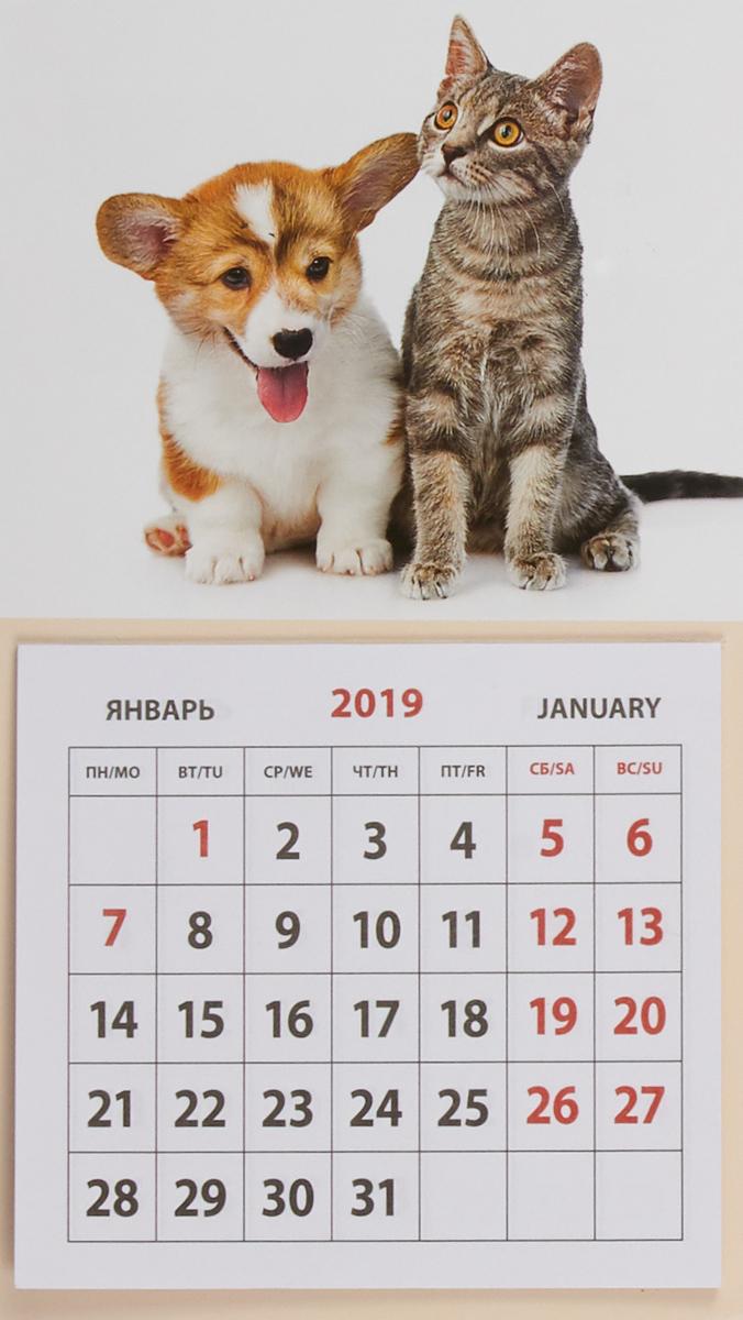 Календарь на магните отрывной на 2019 год. Щенок и котенок