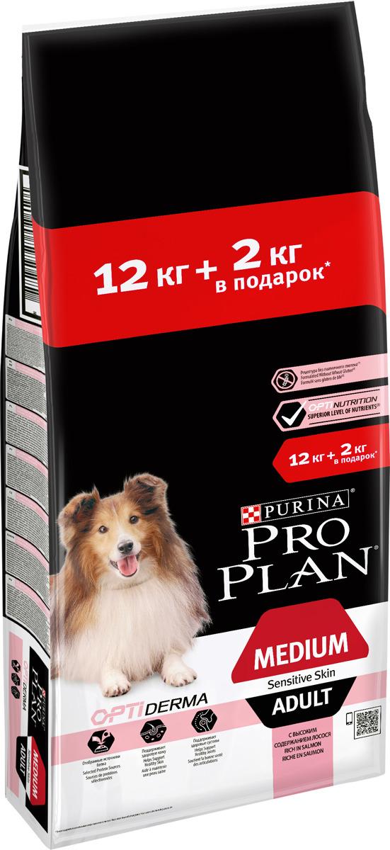 Корм сухой Pro Plan для взрослых собак средних пород, с комплексом Optiderma, с лососем, 12 кг + 2 кг корм сухой pro plan для взрослых собак средних пород с комплексом optidigest с курицей 12 кг 2 кг