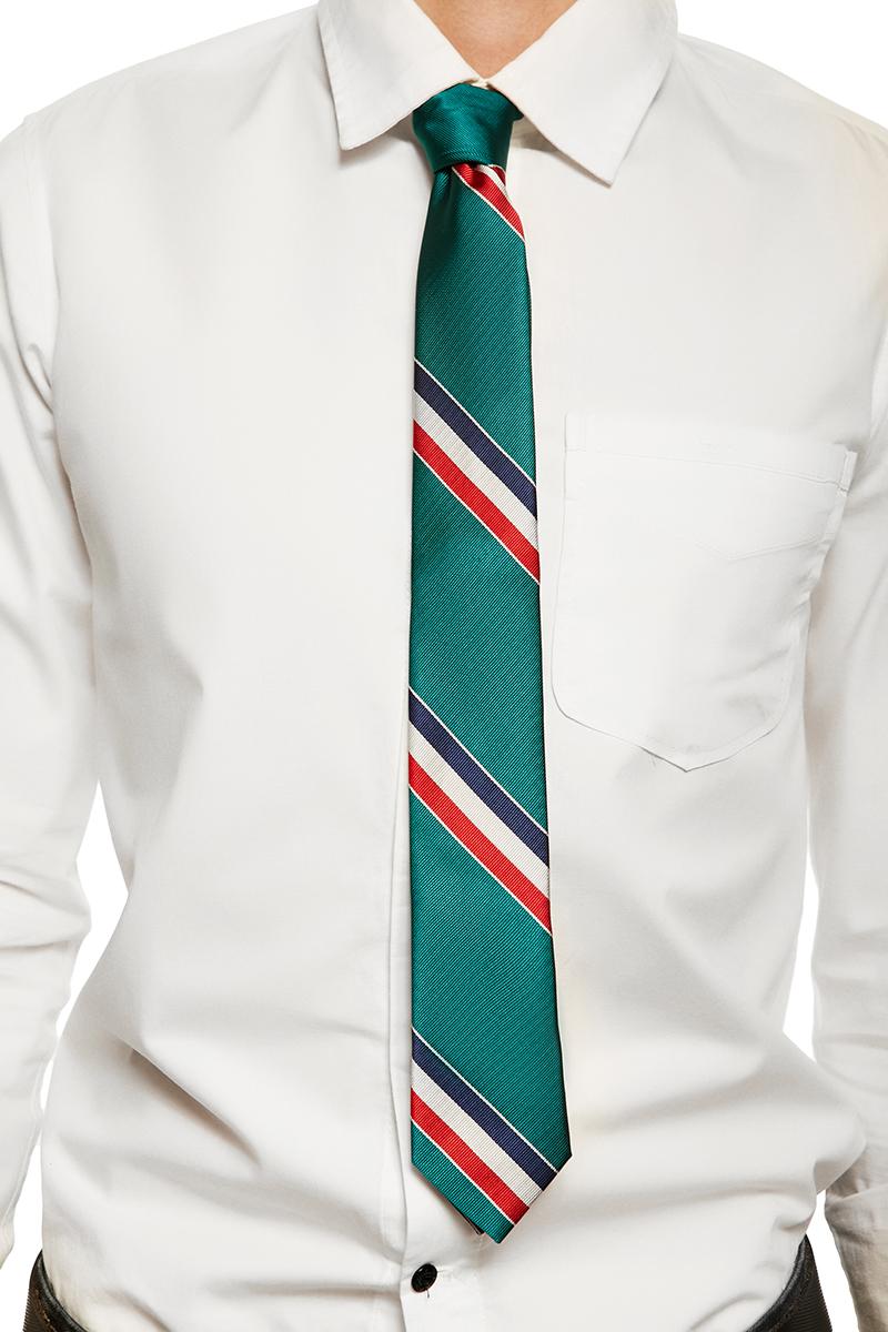 Картинка с галстуками, смешного кота