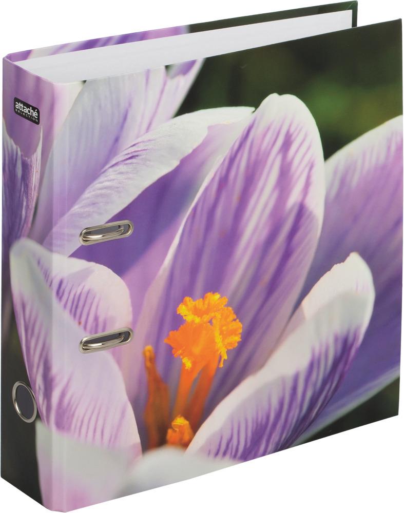 Папка-регистратор Attache Selection Crocus, цвет: мультиколор, А4 карандаш attache