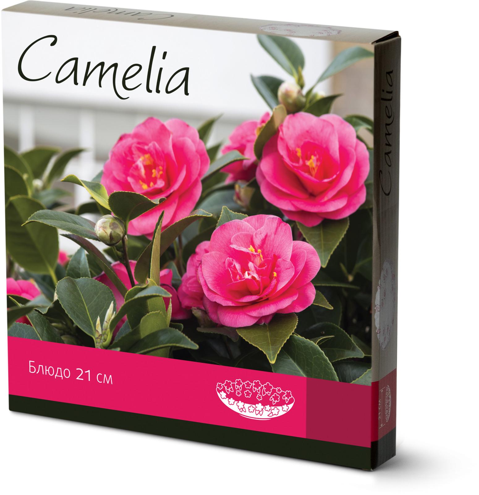 Блюдо Atmosphere Camelia, стеклянное, диаметр 21,5 см