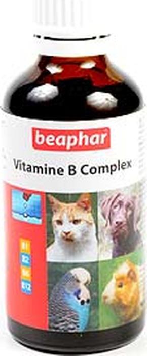 Комплекс витаминов группы В Beaphar, для кошек и собак, 50 мл Beaphar
