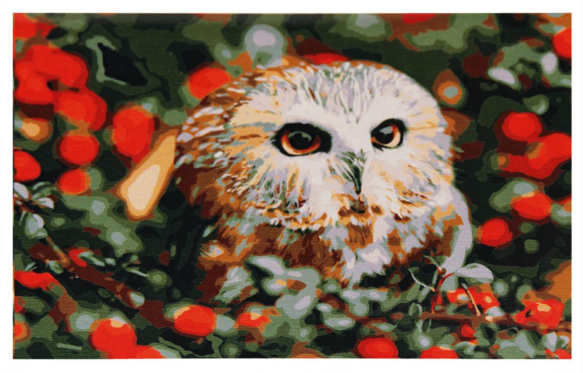 Набор для раскрашивания по номерам Рыжий кот Совёнок и ягоды, 30 х 40 смPP032Перед вами замечательный набор для создания уникального шедевра изобразительного искусства. Создание картин на специально подготовленной рабочей поверхности – это уникальная техника, позволяющая делать ваши шедевры более яркими и реалистичными. Просто нанесите мазки на уже готовый эскиз и оживите картину! Готовые изделия могут стать украшением интерьера или прекрасным подарком близким и друзьям.