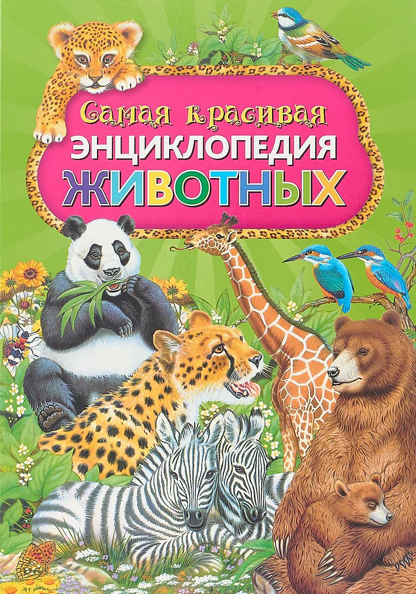 П. Ровира Самая красивая энциклопедия животных цена 2017