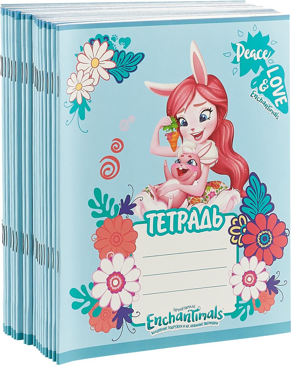 Набор тетрадей Mattel Enchantimals, цвет: голубой, A5, 18 листов в линейку, 20 шт mattel набор настольный mattel enchantimals круглый без наполнения opp пакет с европодвесом