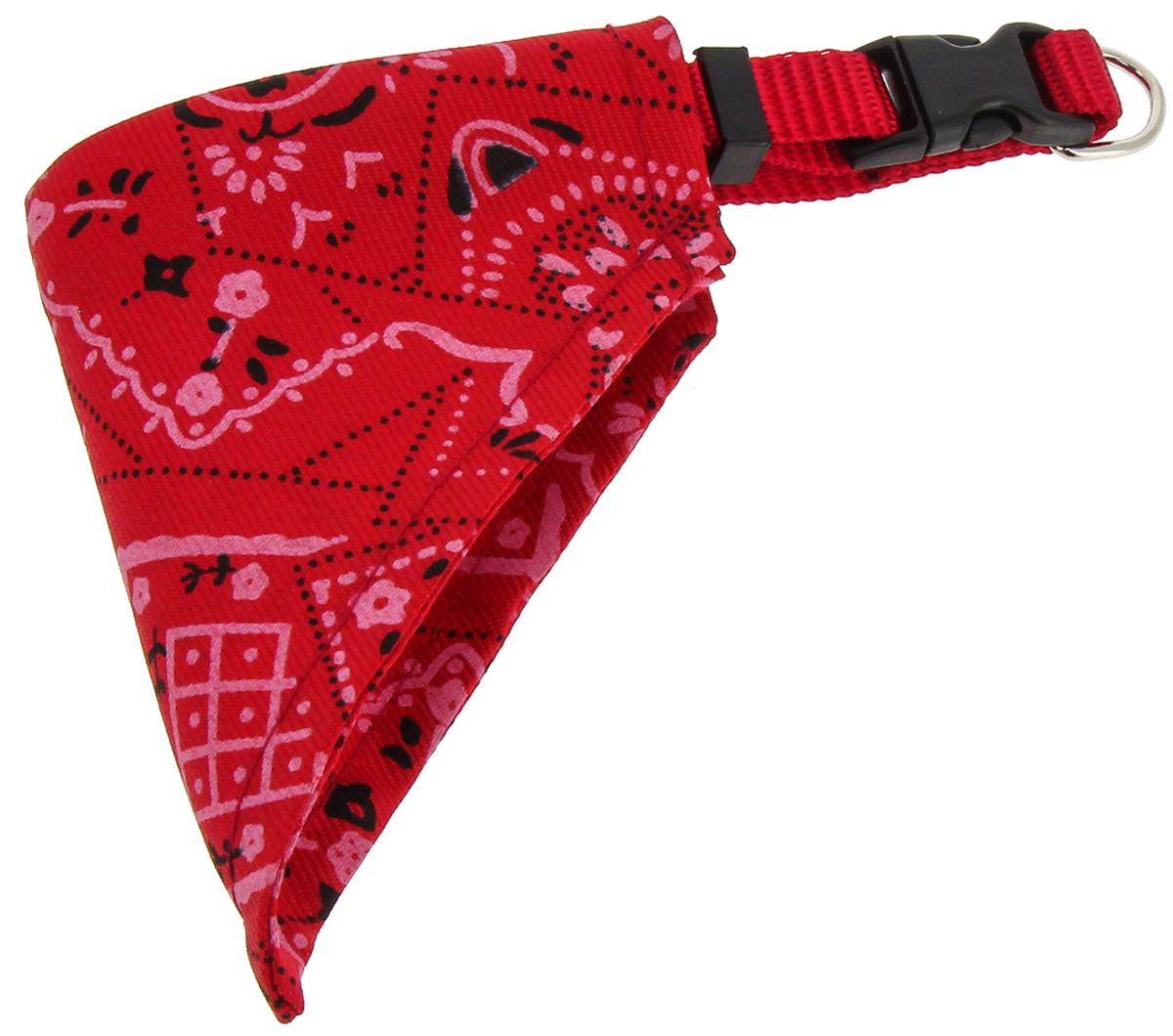 Ошейник для собак Каскад, с косынкой, цвет: красный, ширина 10 мм, обхват шеи 22-35 см ошейник для собак каскад с косынкой цвет красный ширина 10 мм обхват шеи 22 35 см