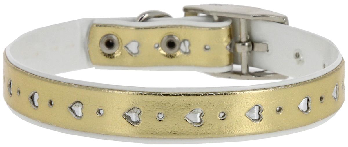 Ошейник для животных Каскад Синтетик. Сердечко, двойной, цвет: золотой, ширина 12 мм, обхват шеи 20-24 см брелок на ошейник каскад сердечко мигающий