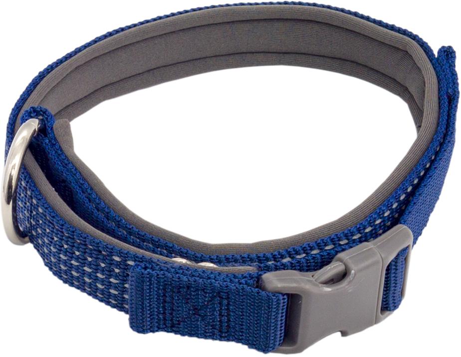 Ошейник для собак Каскад, цвет: синий, ширина 1,5 см, обхват шеи 26-40 см