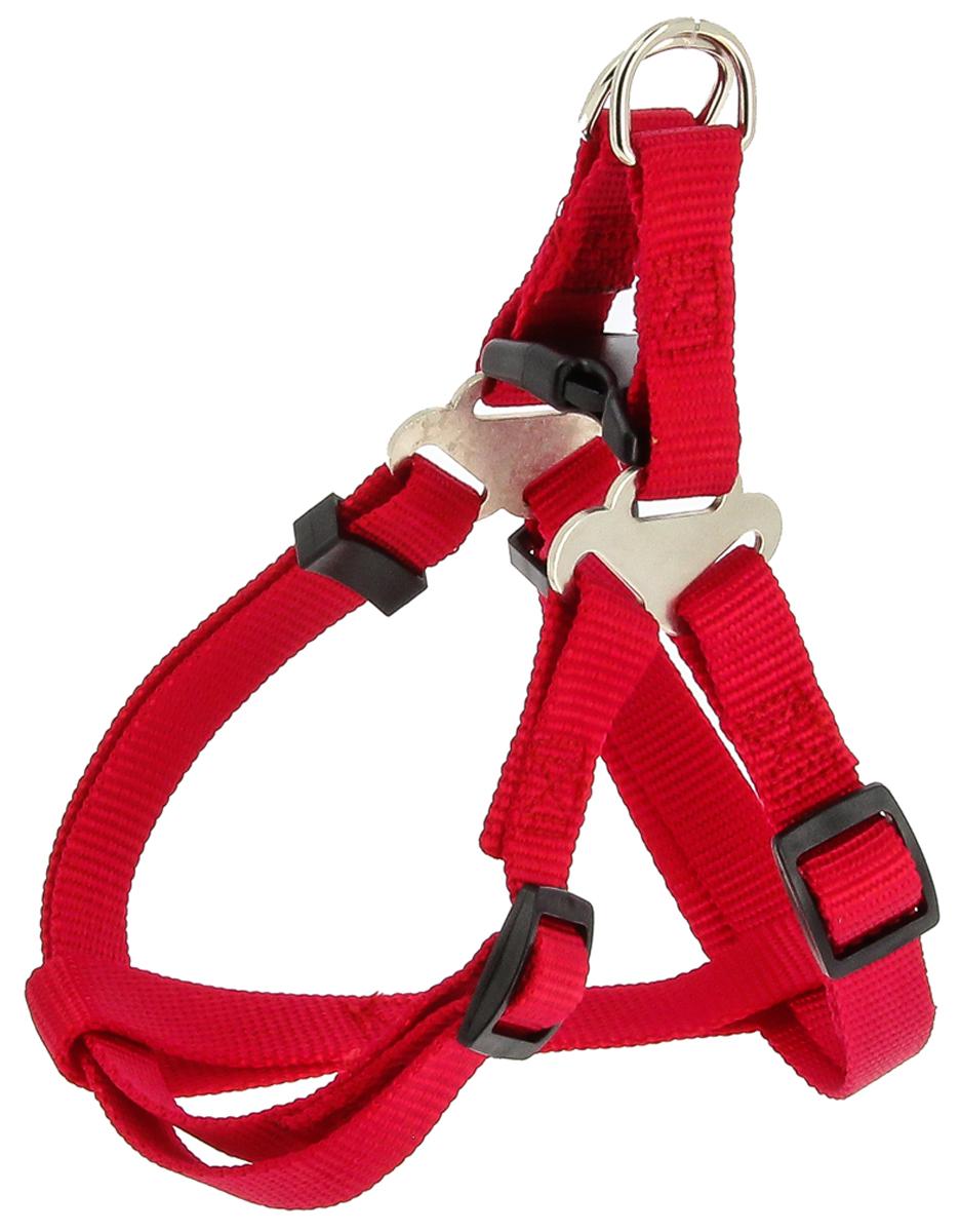Шлейка для собак Каскад, цвет: красный, ширина 20 мм, обхват груди 40-70 см шлейка для собак каскад цвет красный 1 5 х 30 50 см