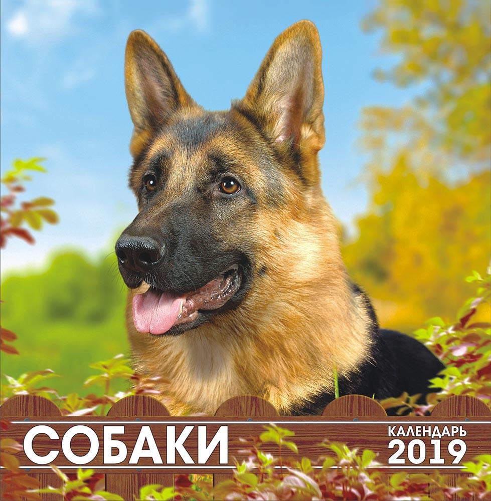 Календарь на 2019 год (на скрепке). Собаки недорого