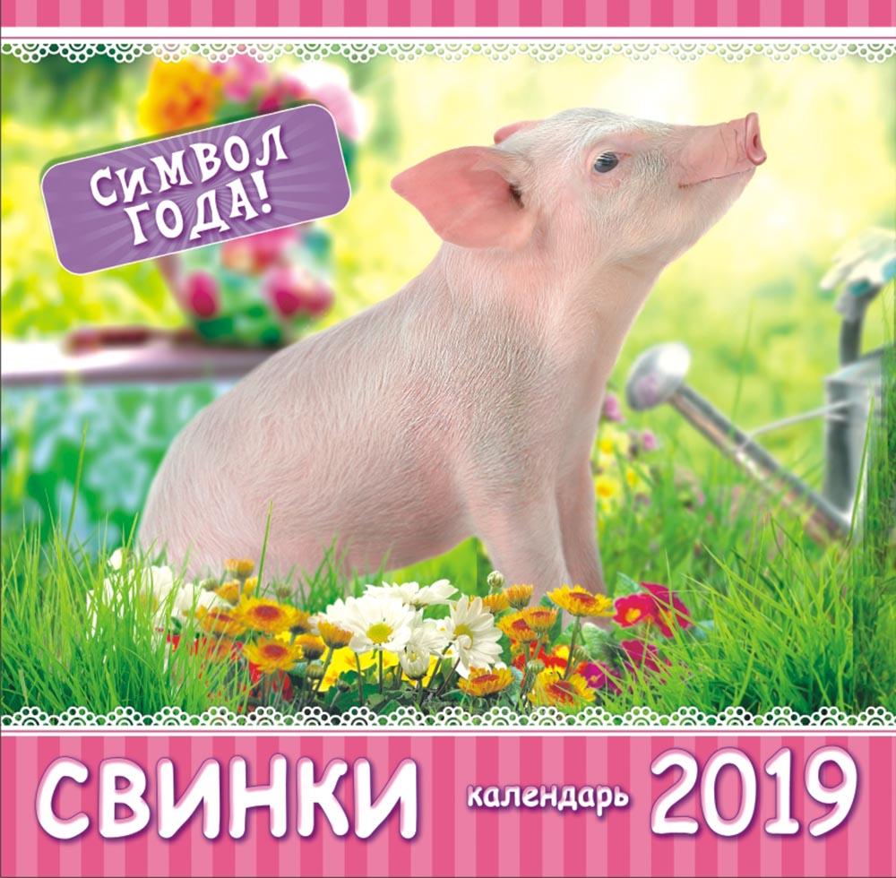 Календарь на 2019 год (на скрепке). Свинка в саду календарь 58 года
