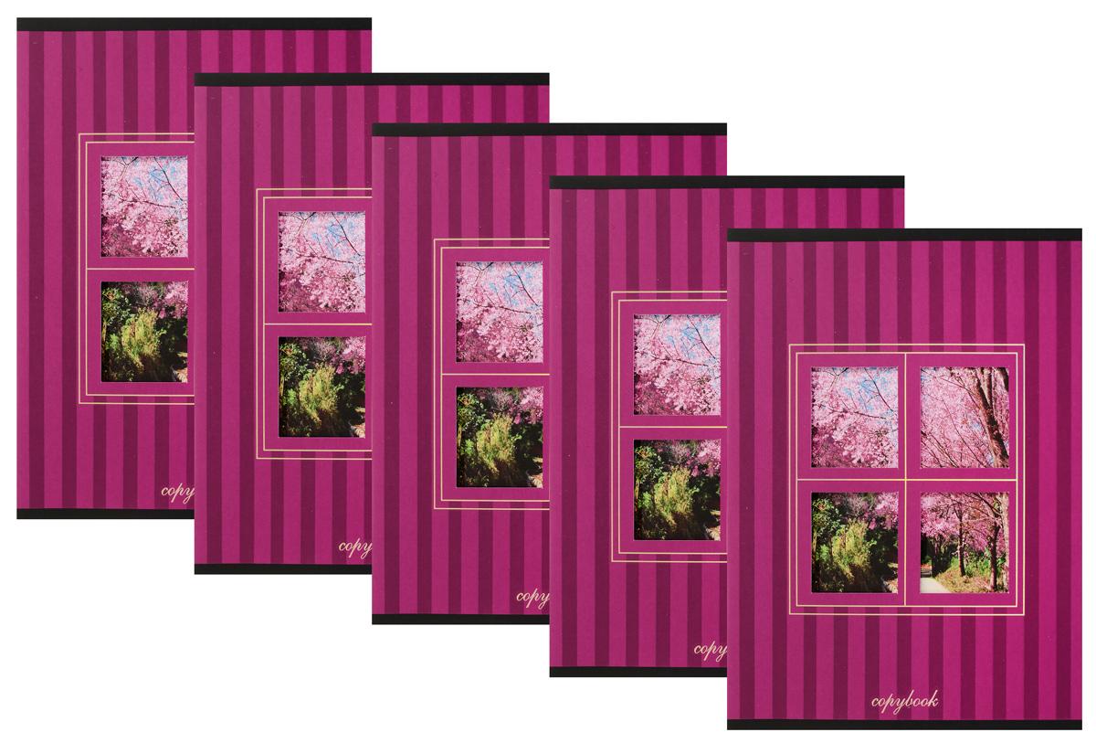 КТС-Про Набор тетрадей Вид из окна 48 листов в клетку 5 шт