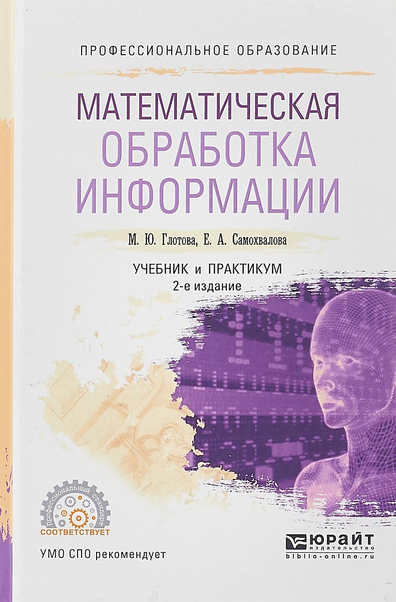 М.Ю. Глотова, Е.А. Самохвалова Математическая обработка информации. Учебник и практикум а е гольдштейн физические основы получения информации учебник