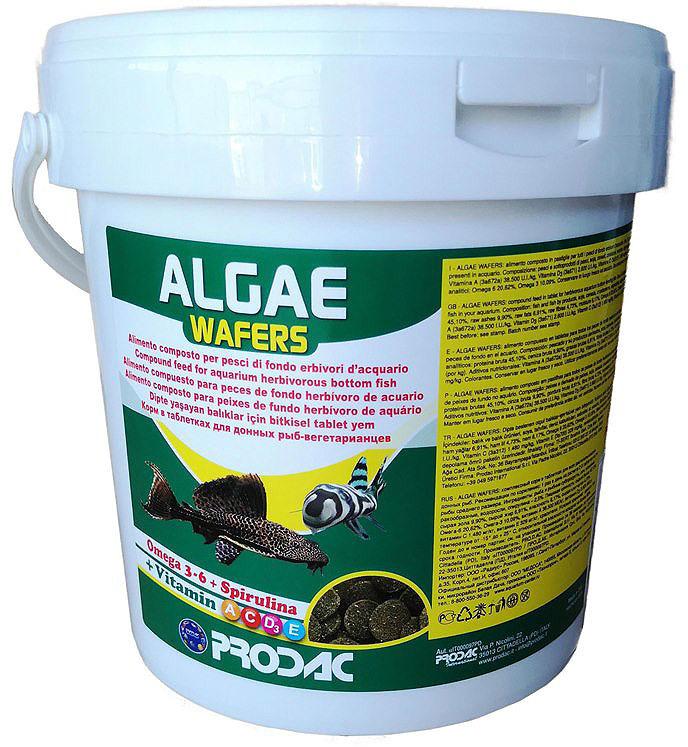 Корм сухой Prodac Algae Wafer, для аквариумных пресноводных рыб, в таблетках, 2 кг витамины в таблетках