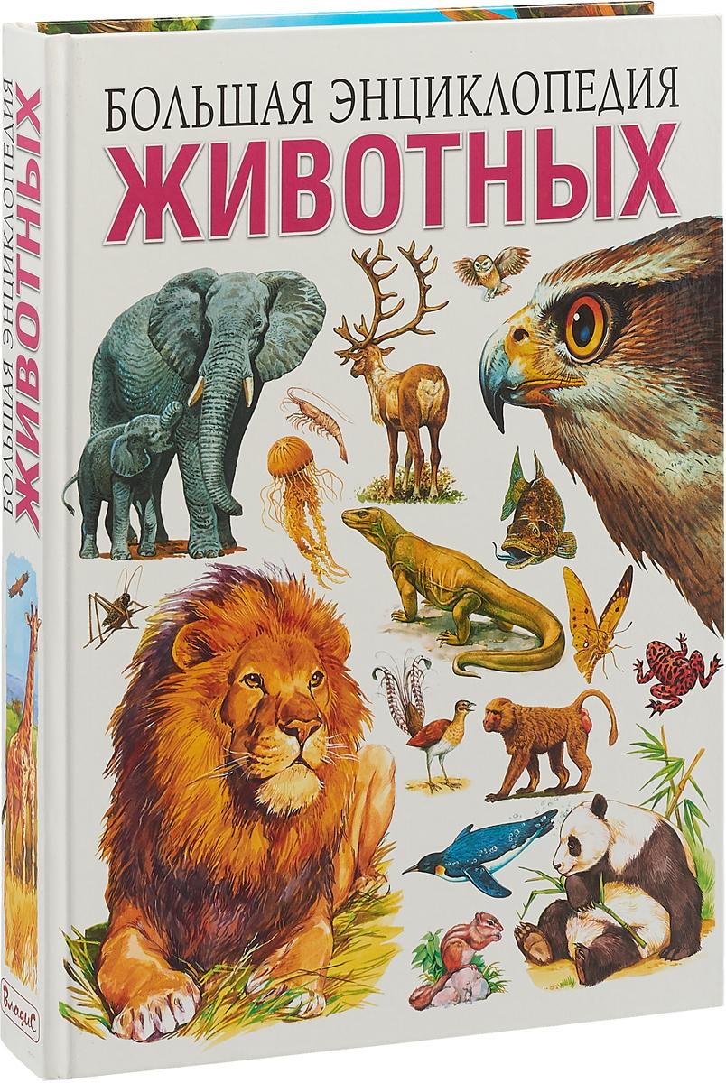 Энциклопедия животных для детей с картинками