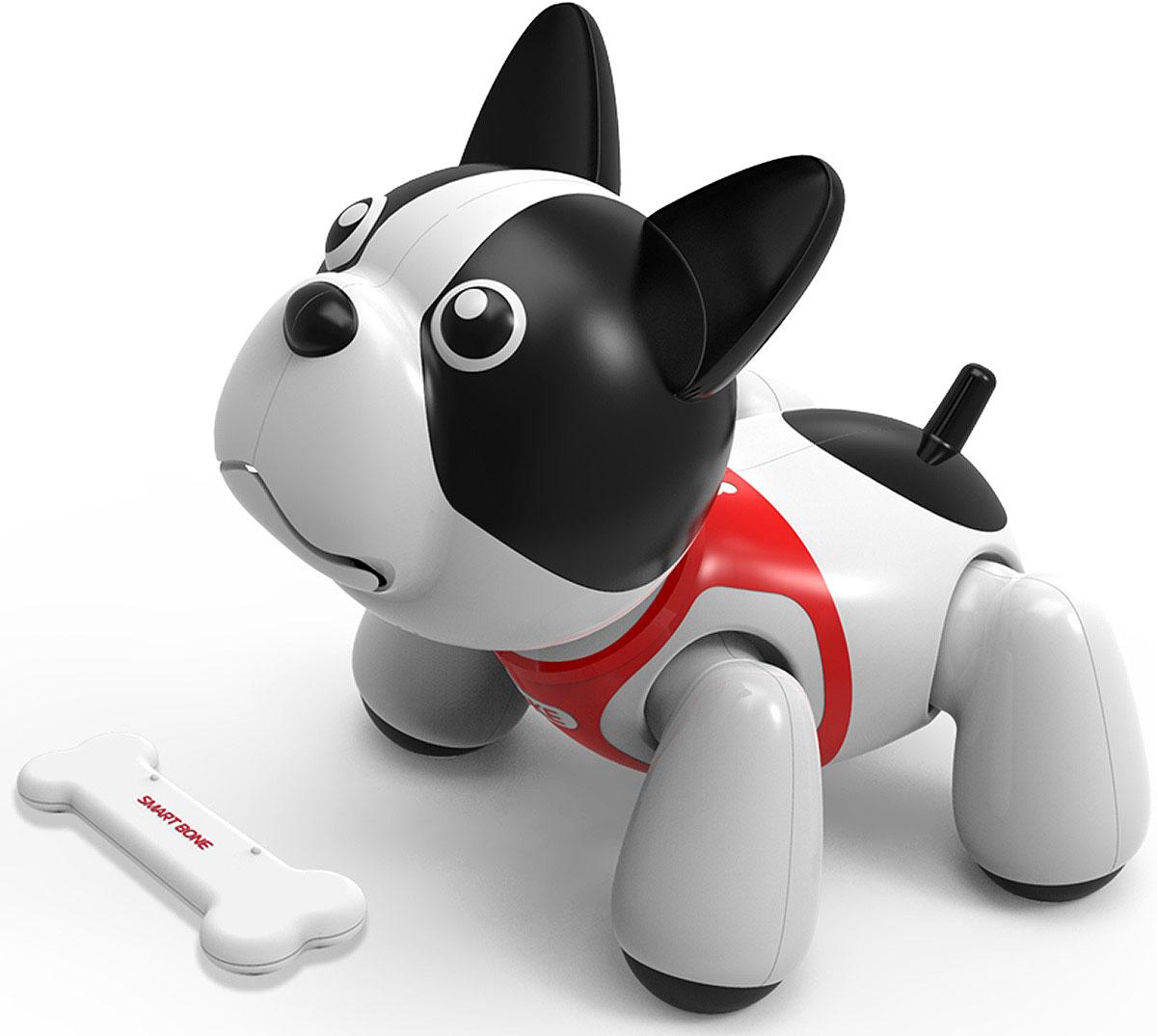 Игрушка робот собака фото впечатление, что