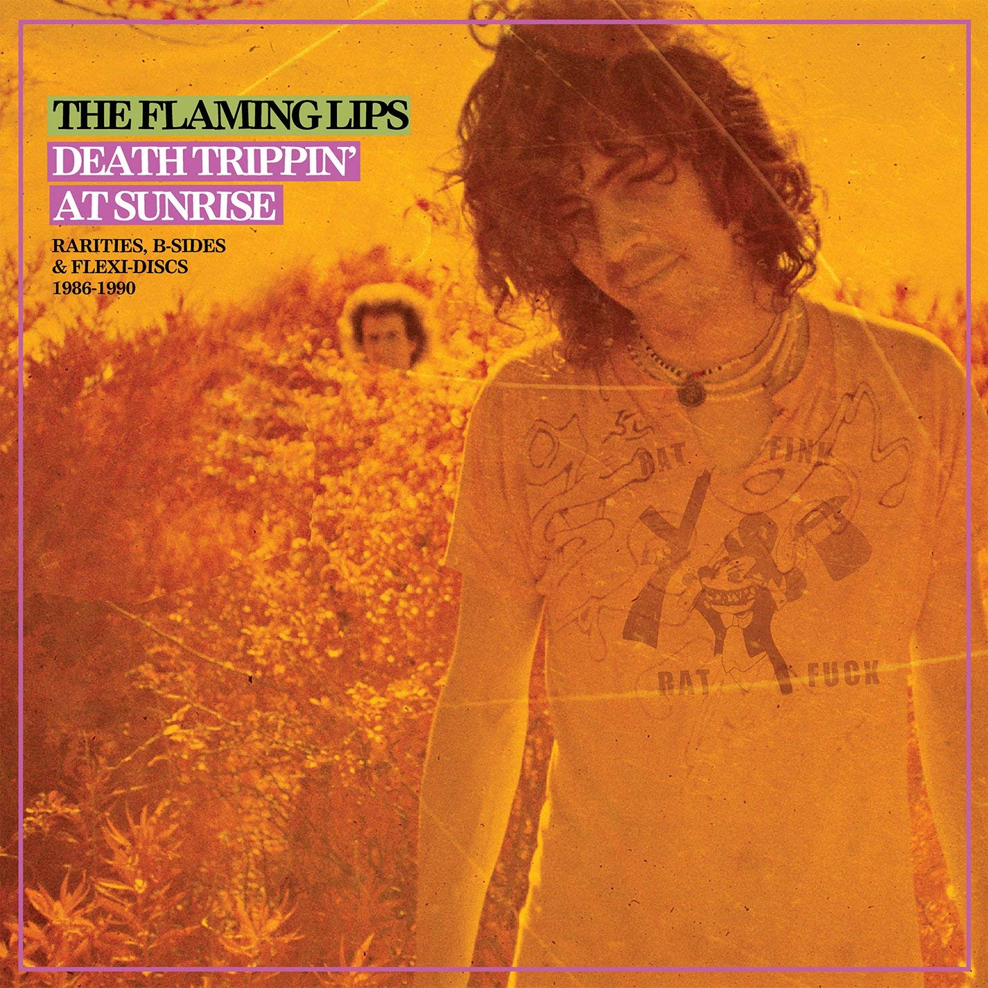 The Flaming Lips The Flaming Lips. Death Trippin' At Sunrise. Rarities, B-Sides & Flexi-Discs 1986-1990 (2 LP) the flaming stars the flaming stars named and shamed