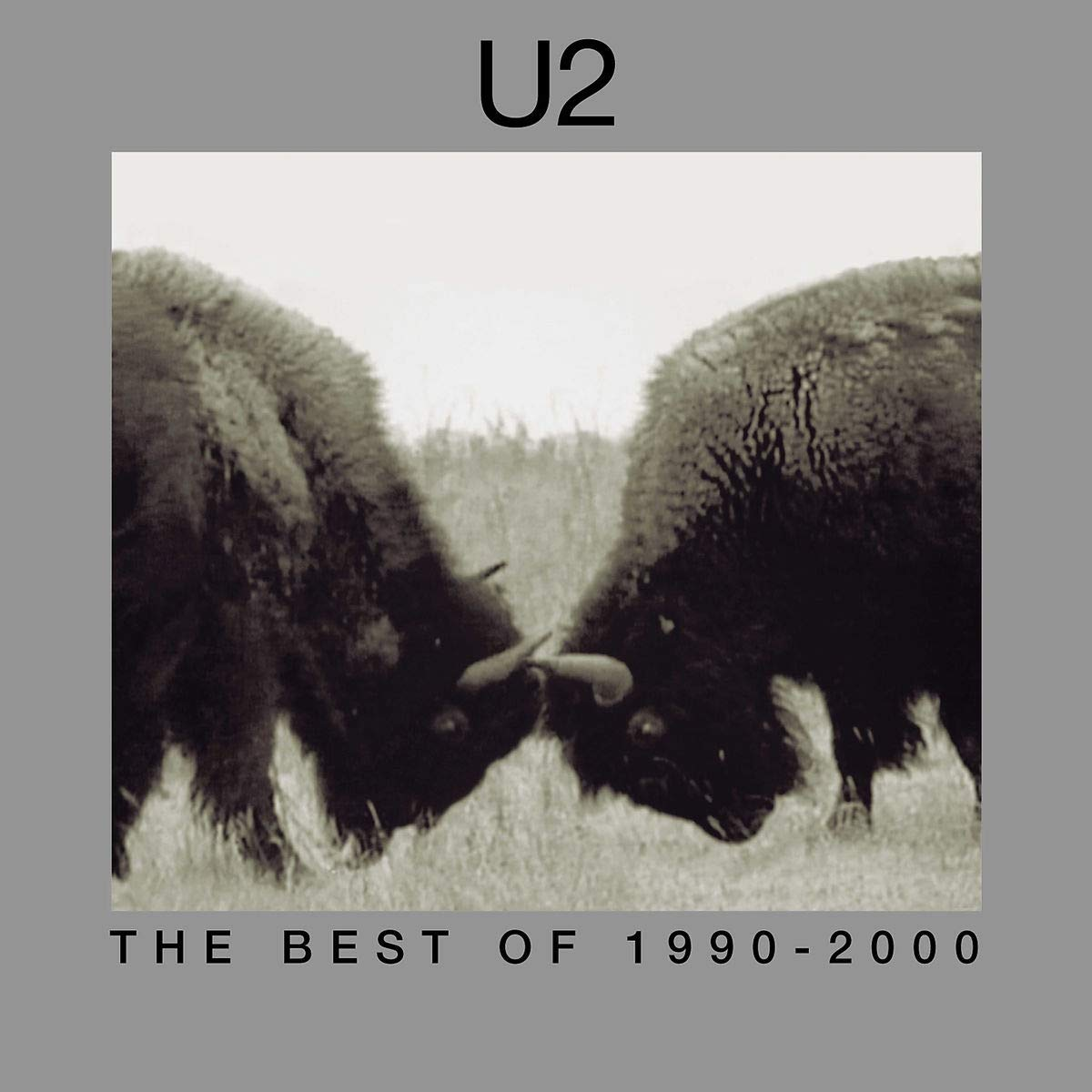 U2. The Best Of 1990-2000 (2 LP)
