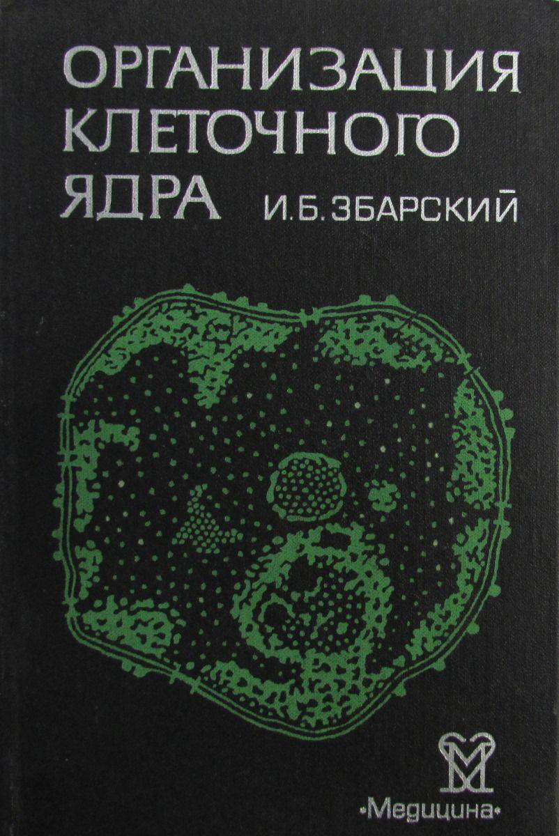 И.Б. Збарский Организация клеточного ядра