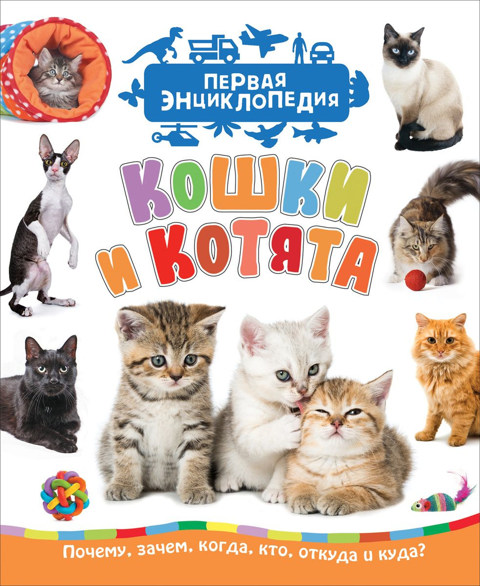 Светлана Гальцева Кошки и котята. Первая энциклопедия